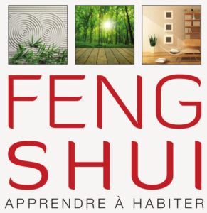 Luc Antoine architecte feng shui - covid 19